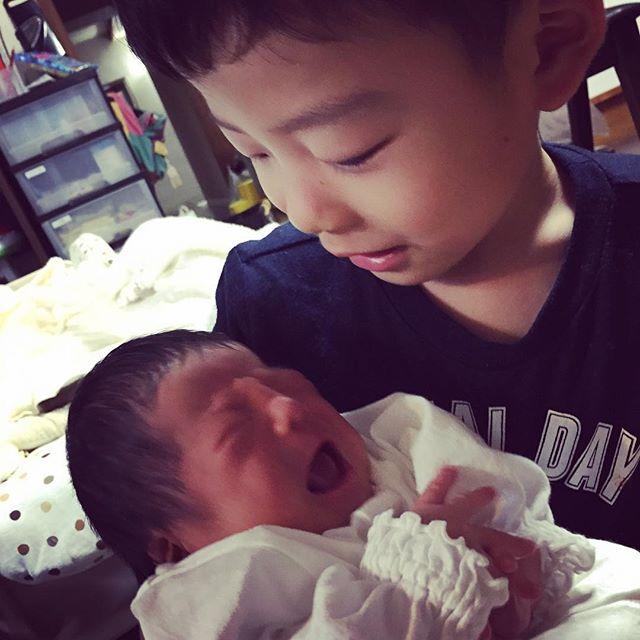 お兄さんになりました(^ω^) 仲良く、元気に育ってね!将来は二人で協力して色々できると良いね